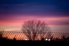 Fence & Bokeh Light - Dusk (CAUT) Tags: winter light sunset sky espaa luz silhouette fence atardecer reja twilight spain nikon bokeh dusk january magenta enero cielo desenfoque invierno silueta mad crepusculo malla anochecer 2016 d610 lemd caut madridbarajas nikond610