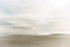 by the sea..... (Brigitte Lorenz) Tags: winter sky beach nature water clouds sand mood calm northsea minimalistic