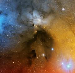IC4603 in Scorpio (Roberto Colombari) Tags: stars nebula astrophotography astrofotografia tenerife dust deepsky astrometrydotnet:status=solved astrometrydotnet:id=nova1433028