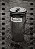 Waste (*altglas*) Tags: bw 120 6x6 film monochrome analog zeiss mediumformat garbagecan expired dustbin expiredfilm superikonta mülltonne fujineopan1600 tessar mittelformat residualwaste 53316 reststoffe