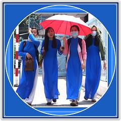 Mekong Delta, Delta du Mekong, Vietnam, My Tho, Can Tho, Vinh Long, Long Xuyen, Sa Dec, Soc Trang, Cao Lanh, Chau Doc, Ca Mau, Cai Rang, Phmg Hiep, Phong Dien, Cai Be, Marché Flottant, Floating Market, Vietnamiens Vietnamiennes, Vietnamese People (tamycoladelyves) Tags: trip ladies woman man cute men lady wonderful amazing nice fantastic women vietnamese tour awesome great delta super vietnam stunning excellent extraordinaire guide traveling mekongdelta paysage mekong beau magnifique floatingmarket hommes insolite femmes beautifull delightful nationalgeographic cantho fleuve mytho routard curiosité carnetdevoyage étrange mekongriver superbe chaudoc oustanding longxuyen cairang ravissant vietnamien sadec vietnamienne vinhlong caibe soctrang vietnamesepeople caolanh surprenant officedutourisme marchéflottant camau touroperator deltadumekong phongdien journeydiary croisièremekong mekongcruse phmghiep lonelyplanete