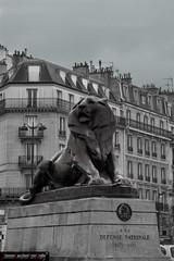 La Defense Nationale (frillicca) Tags: bw paris monument statue march îledefrance monumento lion bn leone francia statua marzo parigi 2015 placedenfertrochereau defensenationale leliondebelfort