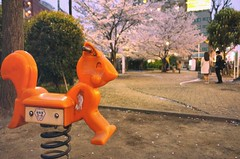 Children Park (Gai) Tags: park pink flower japan cherry tokyo spring blossoms shibuya   sakura