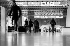 No delay (Go-tea 郭天) Tags: travel people bw white black canon airplane eos 50mm airport delay flight luggage rush arrival toulouse departure blagnac bnw 100d