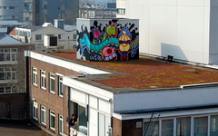 Ces53 - Rooftop (oerendhard1) Tags: urban streetart art rooftop graffiti rotterdam ces53