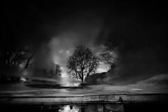 180 (you feel me) Tags: blackandwhite reflection tree water fountain monochrome germany puddle blackwhite photographer erfurt fineart thuringia 24mm 180 stadtpark runkewitz
