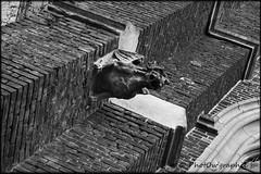 Gargouille (PhotOw'graphie) Tags: monochrome animal noir religion cathdrale foi blanc eglise dcoration monstre cimetire prire mythe