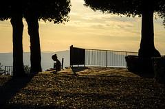 compiti al tramonto (GienBi) Tags: sunset yellow alberi contrast monocromo nikon tramonto giallo fiesole controluce lamadiluce d7000