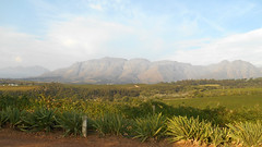 Mountain View (RobW_) Tags: mountain southafrica march view saturday stellenbosch westerncape 2016 05mar2016