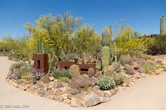 IMG_2950.jpg (ashleyrm) Tags: travel arizona museum sonora desert tucson tucsonarizona