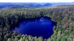Lake Chisholm - The Tarkine Drive (stanley_tasmania) Tags: sink lakes holes stanley tasmania intrepid sinkhole tarkine discovertasmania tarkinedrive