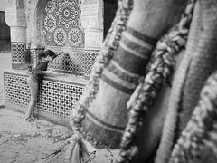 Fes, Marokko, Streetfotografie (insider-fototour) Tags: fountain child brunnen streetlife kind sw marokko fes schmitt mosaik stadtkind fotoworkshop fotoreise frauschmittfotografiert