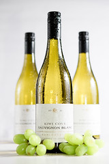 Wine (EugeneEverson) Tags: food white 3 green bottle wine drink cove alcohol grapes kiwi blanc sauvignon