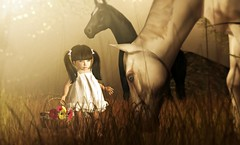Keeping your childlike wonder and enthusiasm alive (Alexa M.) Tags: horses people nature kids children outdoors secondlife buglets lovesoul toddleedoo