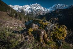 Un p'tit coup de blanc ... (Pierrotg2g) Tags: mountain snow alps nature montagne alpes nikon tokina neige paysage 1228 landscpe belledonne isre d90 dauphin