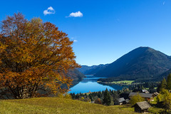 lake Weissensee autumn (michael.taferner) Tags: blue autumn sky lake tree nature water clouds canon landscape eos austria nice day outdoor hiking lawn carinthia leafs 600d 24105l