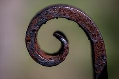 Asymmetrical (Angela.Dee) Tags: black macro turn canon rust iron angle post bend wroughtiron rusty twist 100mm twirl hook 6d quincyil quincycemetery 100mml cy365 20thstate