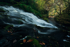 Down the gorge (milos lach) Tags: uk autumn fall wales forest woodland river waterfall woods october stream breconbeacons gorge sgwdclwngwyn aftonmellte