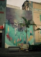 93600011 (Johannaviking) Tags: art wall nikon palm tenerife fujicolor