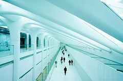 Commuting through an Artistic transition (MukherSo) Tags: nyc newyorkcity subway wtc oculus