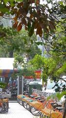 P1050317 (Big Tree Chen) Tags: