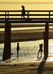 Levels (James_D_Images) Tags: ocean sunset shadow beach silhouette walking pier sand photographer britishcolumbia under whiterock backlit tidepools