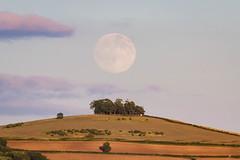 Full Moon over Kelston Roundhill (prosserm534) Tags: moon fullmoon moonrise kelstonroundhill astaken