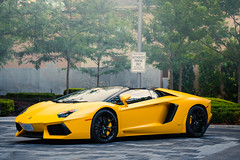 Matte Yellow. (ChrisChung722) Tags: toronto car yellow four hotel seasons exotic lamborghini supercar spotting matte roadster aventador lp7004