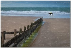 Lone rider (Hugh Stanton) Tags: sea horse seascape beach flickr waves rider groins