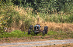 Tractor In A Field - Vancouver Island, British Columbia, Canada (Toad Hollow Photography) Tags: tractor canada abandoned grass rural bc britishcolumbia farm rusty vancouverisland forgotten hdr bucolic