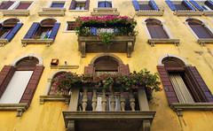 Venezianische Balkone (Liwesta) Tags: flowers venice windows balkon fenster blumen venezia venedig