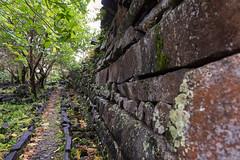Pohnpei Walkway (Warriorwriter) Tags: water rain stone wonder day cloudy overcast unesco jungle fsm basalt monoliths worldheritage micronesia oceania pohnpei nanmadol