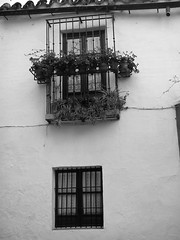 calle Vida (andreamary) Tags: santacruz sevilla spain architechture