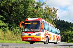 RMB Bicol Express Transport System, Inc. - 1995-10 (blackrose917_051) Tags: bus transport parkway express kia hyundai society bicol philippine enthusiasts rmb 199510 sdii granbird philbes d6ac km949s