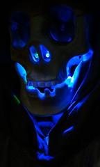 Is Trumps anti-establishment? DSC05616 (jaciii (off&on)) Tags: abstract halloween skull