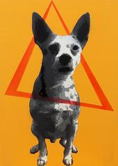 Teddy - Z - Lixo - Lixeiro - Cobra - Muleque - Favelento - Bicho (mon_araujo) Tags: dog grey stencil cobra teddy cachorro z lixo bicho lixeiro muleque mtn94 favelento