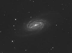 NGC2903_352x30s (bdeclerc) Tags: astronomy astrometrydotnet:status=solved astrometrydotnet:id=nova1479021