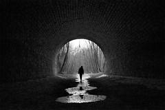 Ancien tunnel ferroviaire (flallier) Tags: tunnel silhouette flaque eau anciennevoieferrée idf îledefrance buresuryvette reflets bnw nikon d700 20mm ais nikkor