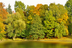 Happy Tree-mendous Tuesday! :))) (Paulina_77) Tags: park wood autumn trees wild orange lake motion blur reflection tree fall nature water colors leaves weather yellow forest photoshop reflections garden season landscape gold mirror golden pond woods nikon scenery colorful warm colours peace view outdoor wildlife creative mother scenic surreal peaceful tranquility poland polska scene calm falling foliage reflect serenity greenery serene sight colourful nikkor tranquil autumnal hdr soothing palette lodz 18105 d mirroring postprocessing d90 18105mm nikond90 nikkor18105mm 18105mmf3556 nikkor18105mmf3556 pola77