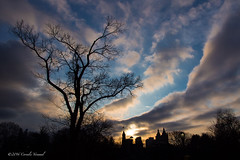 Remains of the Light (CVerwaal) Tags: trees clouds centralpark sunsets belvederecastle sanremo olympusem5 lumixgvario1235mmf28