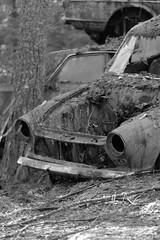 20160203089757 (koppomcolors) Tags: old cars car forest vintage sweden skog bil sverige veteran vrmland gammal bilar varmland bstns koppomcolors