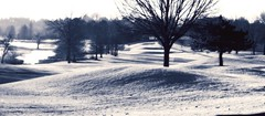 Frosted (Amandaclicks) Tags: morning trees water monochrome landscape frost tennessee monochromatic golfcourse landscapephotography