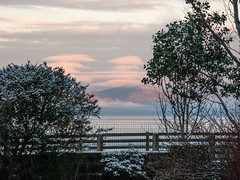 snow_in_our_garden_7888-1 (allybeag) Tags: trees winter snow weather sunrise garden veg cobbles bushes criffel slouds