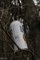 2.14.16_Miller lite can (jrbeckwith) Tags: park girls beer photography photo texas tx sunday picture daughters jr can valentines fortworth arcadia millerlite liter 2016 beckwith daddydaughter jbeckr