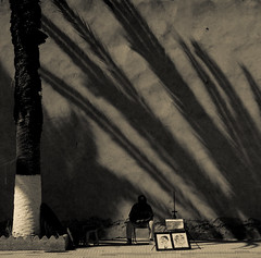 Le palmier-ventail (cafard cosmique) Tags: africa street portrait portraits photography photo foto image northafrica retrato streetphotography portrt ombre morocco maroc maghreb portret marruecos ritratto essaouira marokko marrocos afrique  afriquedunord