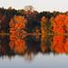 "10-24-2012 Lake Guntersville-- Dersham • <a style=""font-size:0.8em;"" href=""http://www.flickr.com/photos/91322999@N07/25289544501/"" target=""_blank"">View on Flickr</a>"
