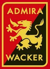 2016-02-27 AKA U15 Admira Wacker Mödling - U15 Honved Budapest (HU) 0000