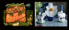 6 Sheep (Room With A View) Tags: birthday art pairs dyptich carolineme