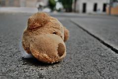 Beheaded on the street (Shubert Silva) Tags: bear teddy peluche beheaded decapitado