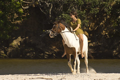 You Can Lead a Horse to Water 13 (ArdieBeaPhotography) Tags: trees two horse beach river bareback sand women couple dunes pair young lagoon pony pohutukawa